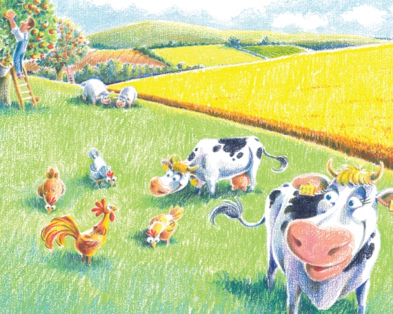 DG Agri Book  – EU Commission 2016